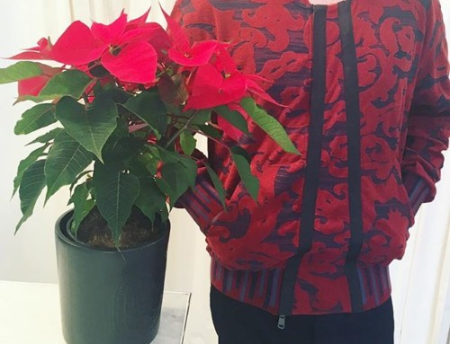 A beautiful statement piece, this Vivienne MAN Bomber in Bordeaux Ironwork print is in store now at Pour Tous ️️