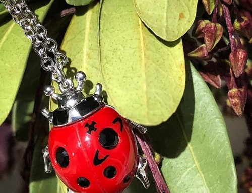 Vivienne Westwood ladybird jewellery, super cute and in store now  shop now link in our bio